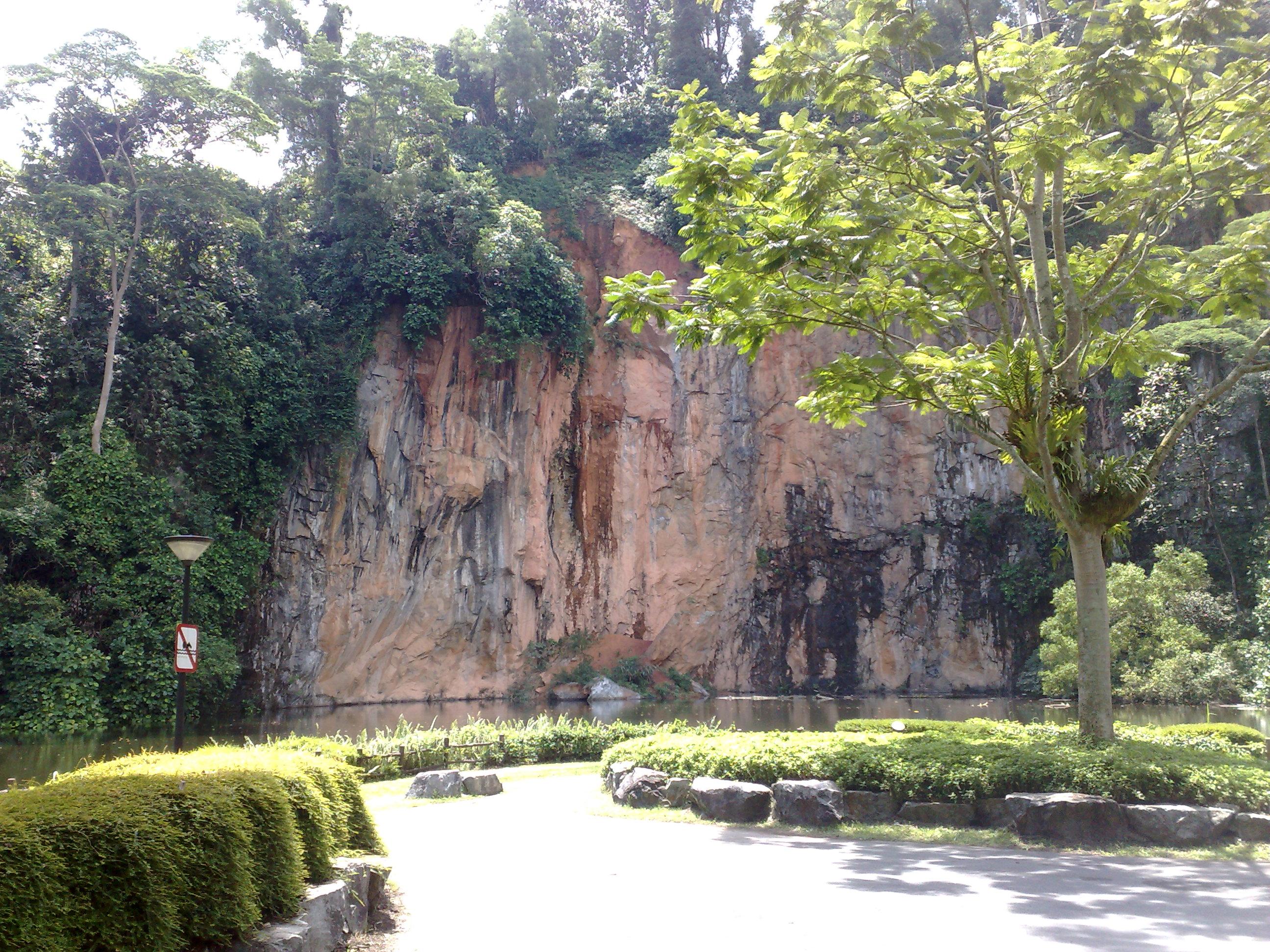 Bukit Batok Nature Park Bus