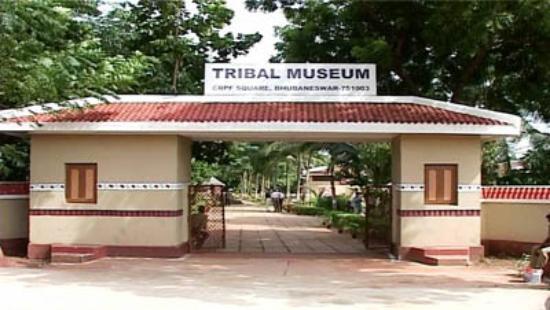 Museum Of Tribal Arts Amp Artifacts Tourmet