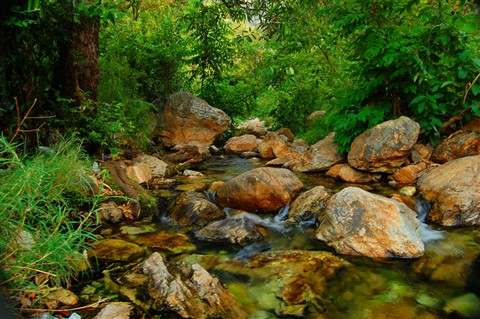 [Image: Ubbalamadugu-Falls-Srikalahasti1.jpg]