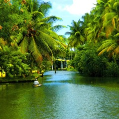 Popular Destinations Kerala
