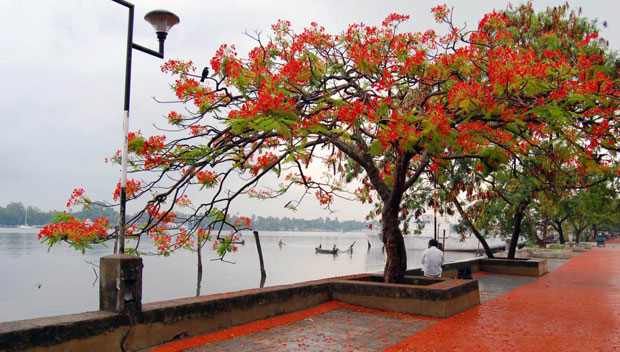 5 Beaches Weekend Getaways From Kochi